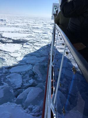 drift-ice-202002-03.jpg