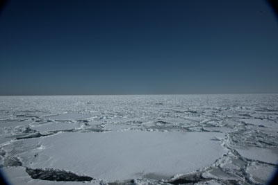 drift-ice-202002-04.jpg
