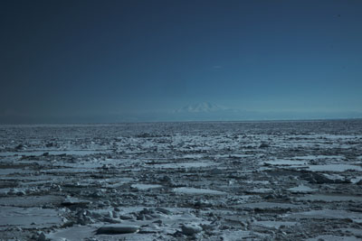 drift-ice-202002-05.jpg