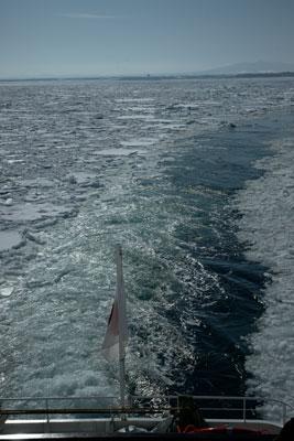 drift-ice-202002-07.jpg
