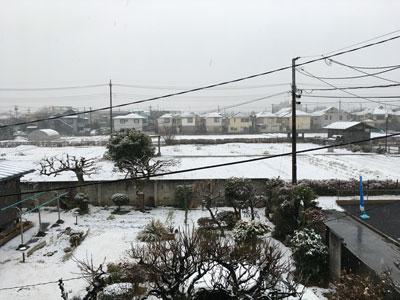 snow-20210128-2.jpg